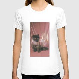 Muad'Dib Cat Portrait in Mauve T-shirt