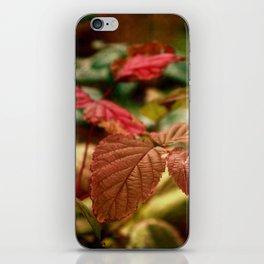 Tourmaline iPhone Skin