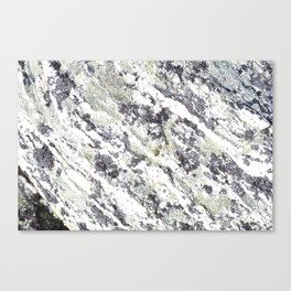 Other planet Canvas Print