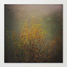 Vintage flowering bloom Canvas Print