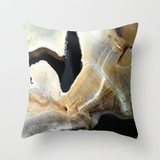 Ravine Throw Pillow