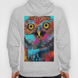 Burrowing Owl Hoody