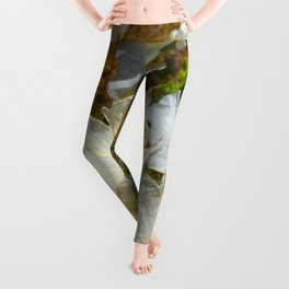 Mexican Poppies Leggings