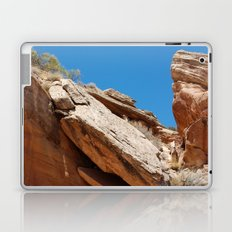 Colorado National Monument Laptop & iPad Skin
