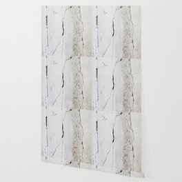 Cracks in Concrete rustic decor Wallpaper