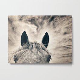 Horse and Sky - Varina Virginia 2020 Metal Print