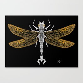 Royal Dragonfly Canvas Print
