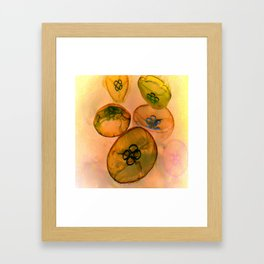 Jellyfhish  Fantasy Framed Art Print