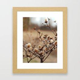 Burnt Flowers Framed Art Print