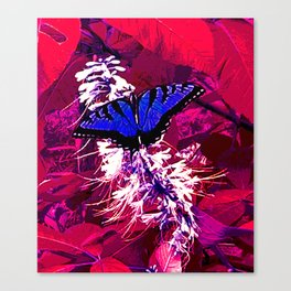 Blue Butterfly on Red Leaves Canvas Print