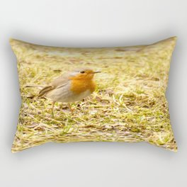 Hello Robin! #decor #society6 #buyart Rectangular Pillow