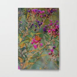 August Butterfly Metal Print