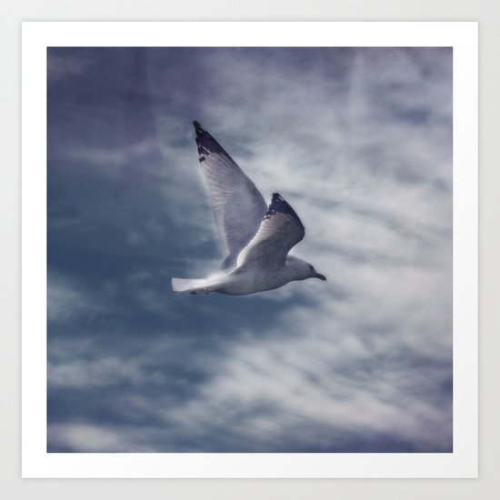 Jonathan Livingston Seagull Art Print