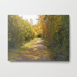 Autumn Hedgerow Metal Print