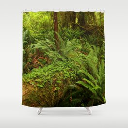 In The Cold Rainforest Shower Curtain