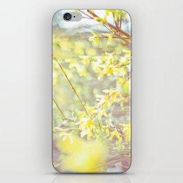 Yellow Forsythia iPhone Skin
