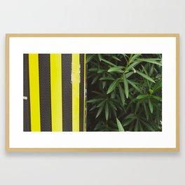 Sweet Jane Framed Art Print