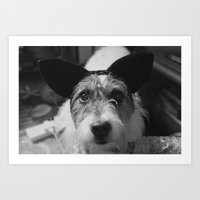 jack russell Art Prints featuring Jack Russell by Arianne Kenworthy Photography
