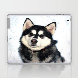 Kayla the Alaskan Malamute Laptop & iPad Skin