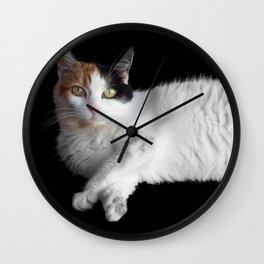 Calico Cat on Black  Wall Clock