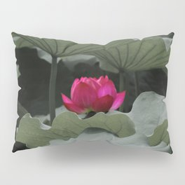 Nature's Pink Pillow Sham