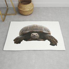 Sulcata Tortoise Rug