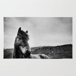 Icelandic Horse Rug