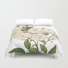 Botanical Print, White Roses, Rosa Noisettiana Duvet Cover
