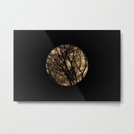 Full Moon though the trees Metal Print