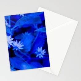Blue Vision flowers Stationery Cards