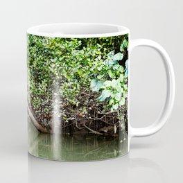 Daintree Rainforest- Reflection Coffee Mug