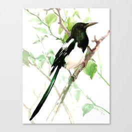 Magpie Bird, magpie Canvas Print