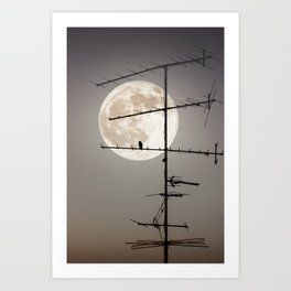 A Supermoon by Omerika Art Print