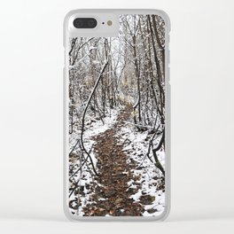 The path in the beginning of winter. Clear iPhone Case