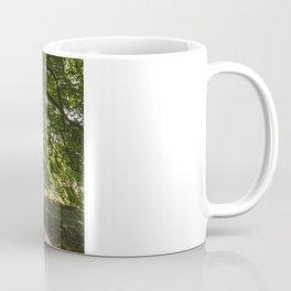 Sunlight through ancient Beech trees (Fagus sylvatica). Norfolk, UK. Coffee Mug