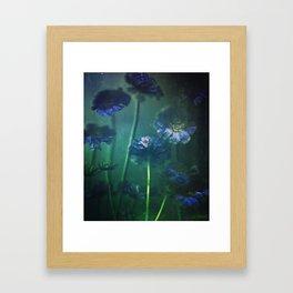 Scabious Blue Framed Art Print