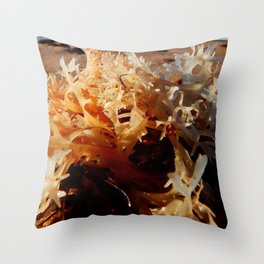 Seaweed on the Beach Throw Pillow