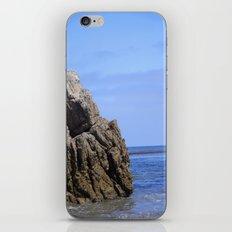 Integrity iPhone & iPod Skin