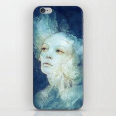 Net iPhone & iPod Skin
