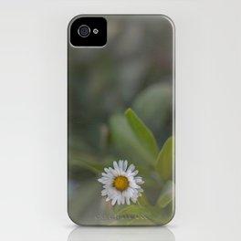 Daisy 2 iPhone Case