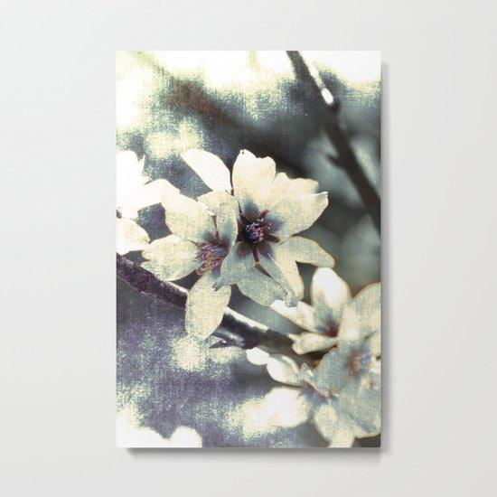 Almond bloom Metal Print