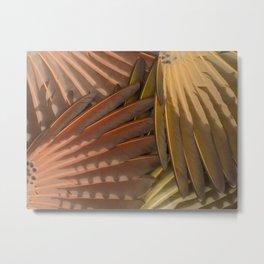 Northern Flicker Wings Metal Print
