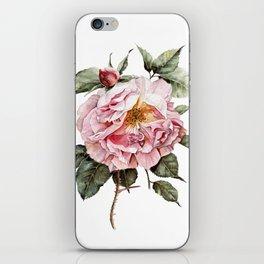 Wilting Pink Rose Watercolor iPhone Skin