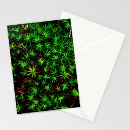 Moss in Moonlight - Shenandoah National Park Stationery Cards