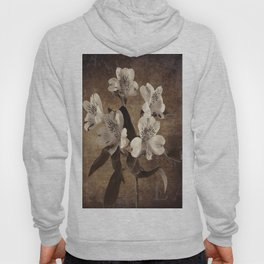 Vintage Flowers Digital Collage 19 Hoody