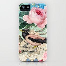 Vintage birds #3 iPhone Case