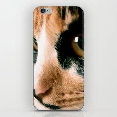 Thinking Cat iPhone Skin