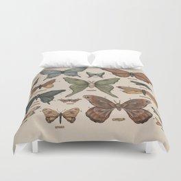 Butterflies and Moth Specimens Duvet Cover
