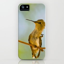 Itchy Bird iPhone Case