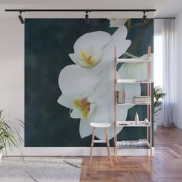 Orchid purity Wall Mural